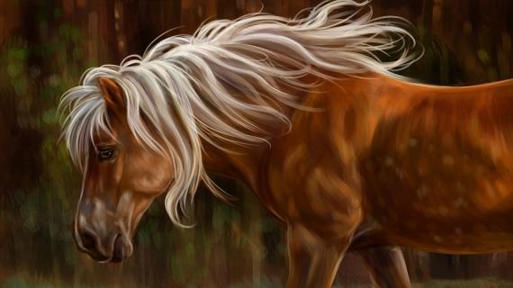Постер (плакат) Лошадь