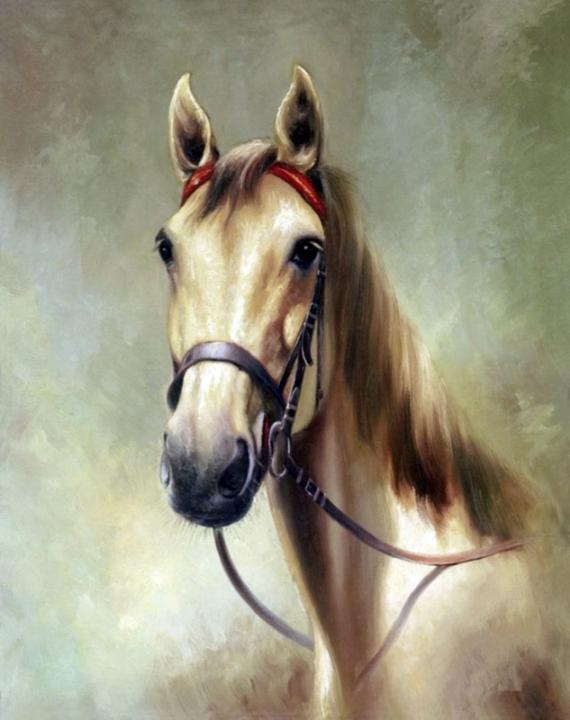 Постер (плакат) Лошадка