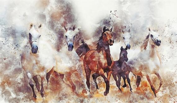 Постер на подрамнике Лошадки