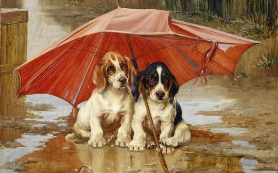Постер на подрамнике Под зонтом