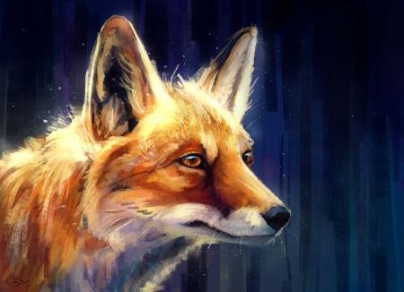 Постер на подрамнике Взгляд лисы
