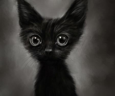 Постер на подрамнике Забавный котёнок