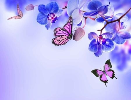 Плакат Бабочки и синие орхидеи