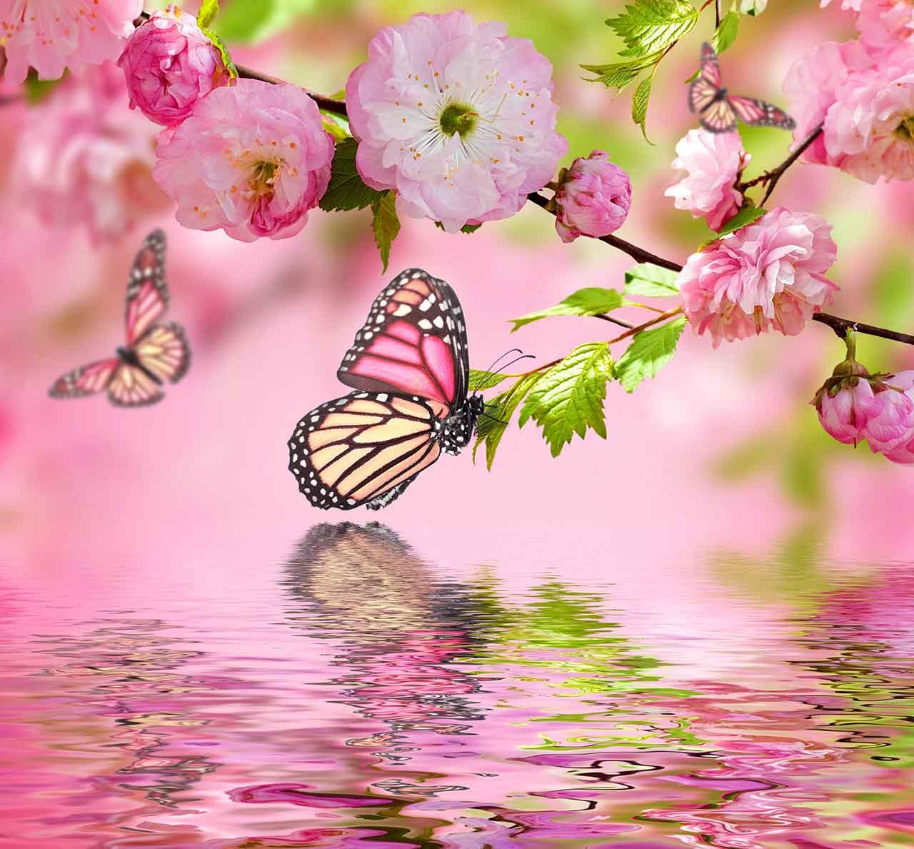 Постер на подрамнике Весенние бабочки