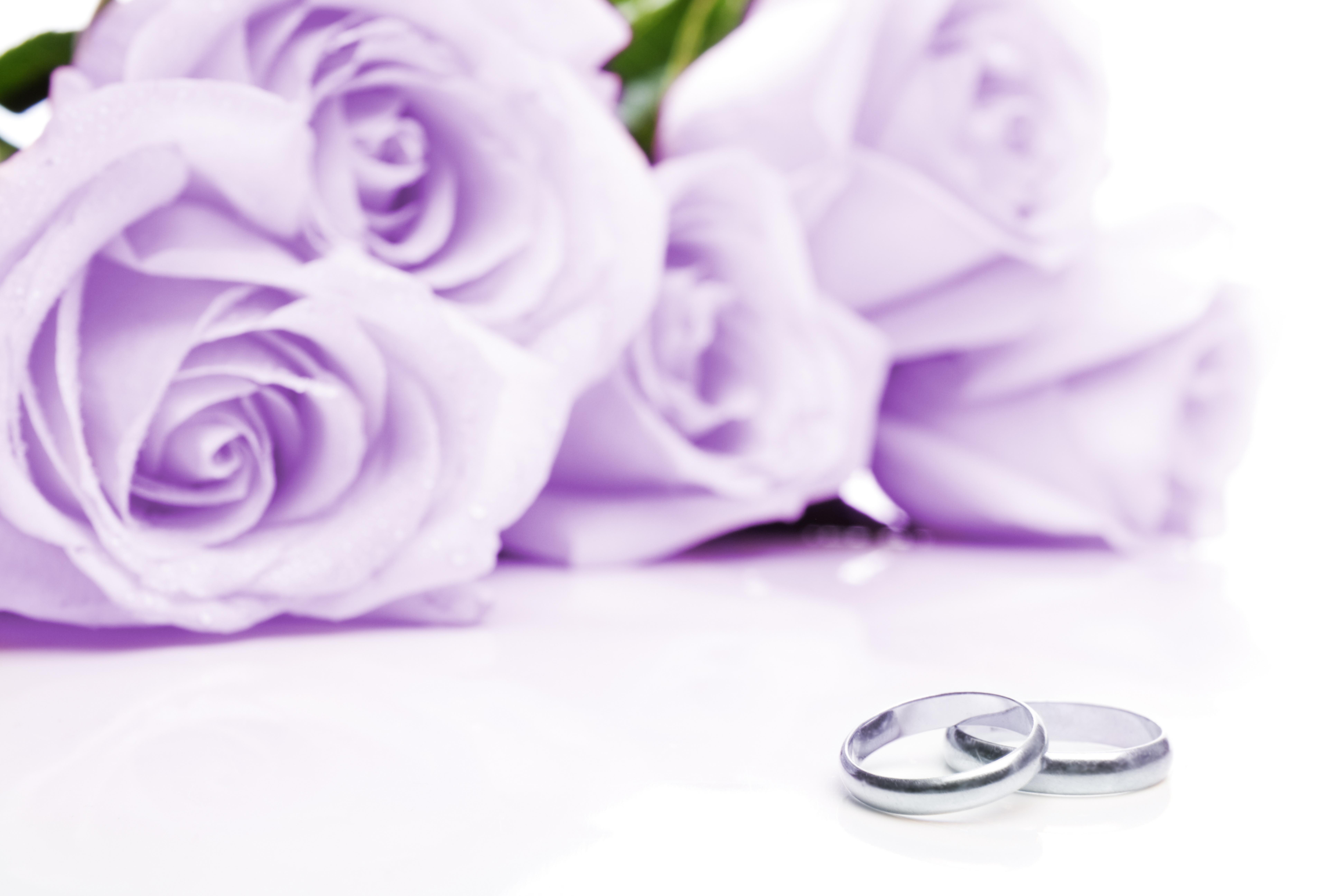 Плакат Свадебные розы