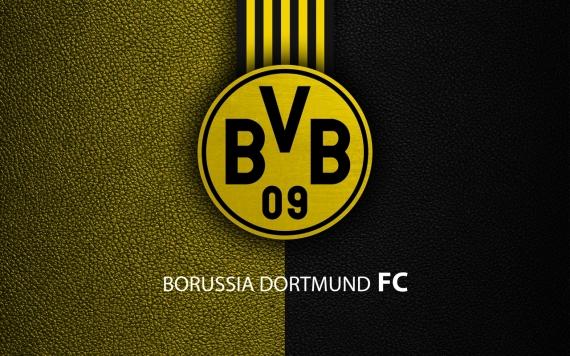 Постер на подрамнике Боруссия