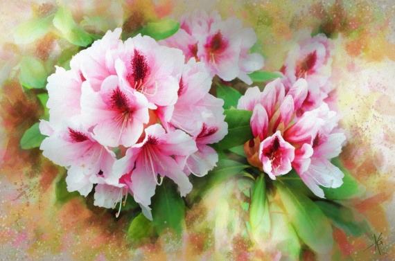 Постер на подрамнике Красивые цветы