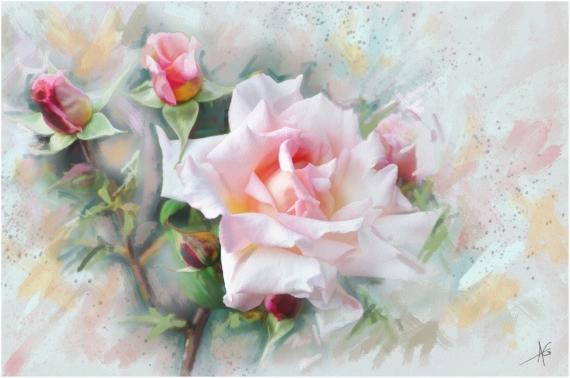 Постер на подрамнике Роза