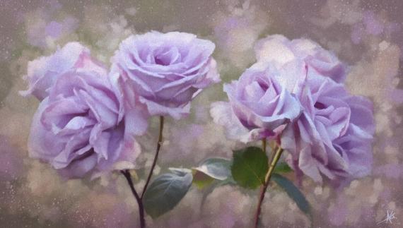 Постер на подрамнике Сиреневые розы