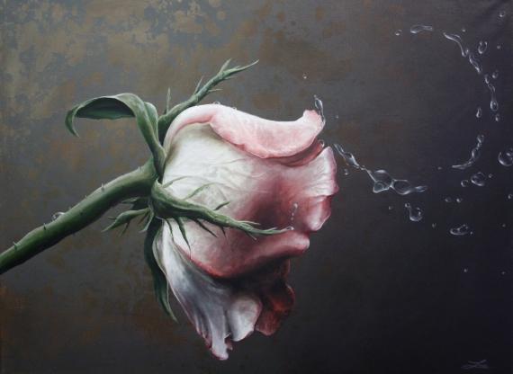 Постер на подрамнике Роза и капли воды