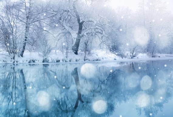Постер (плакат) Начало зимы