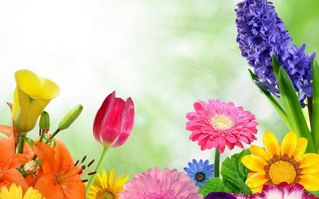 Плакат Весна