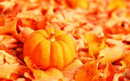 Плакат Осень