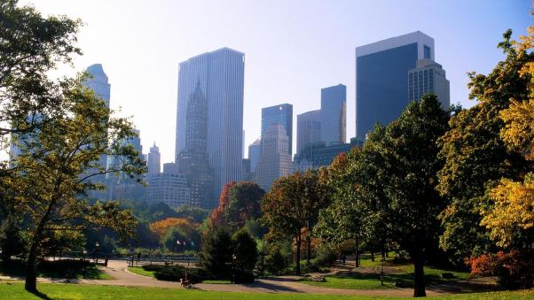 Постер (плакат) Центральный парк Нью-Йорка в зелени
