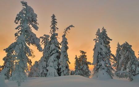 Плакат Зима