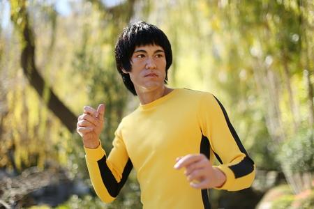 Постер на подрамнике Брюс Ли (Bruce Lee)