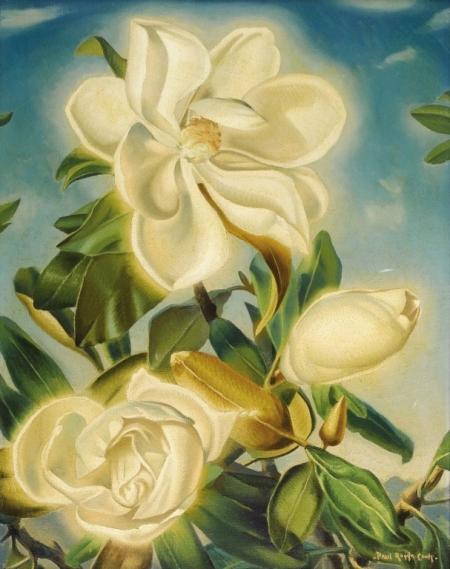 Плакат Белые розы