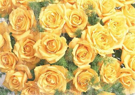 Плакат Букет желтых роз