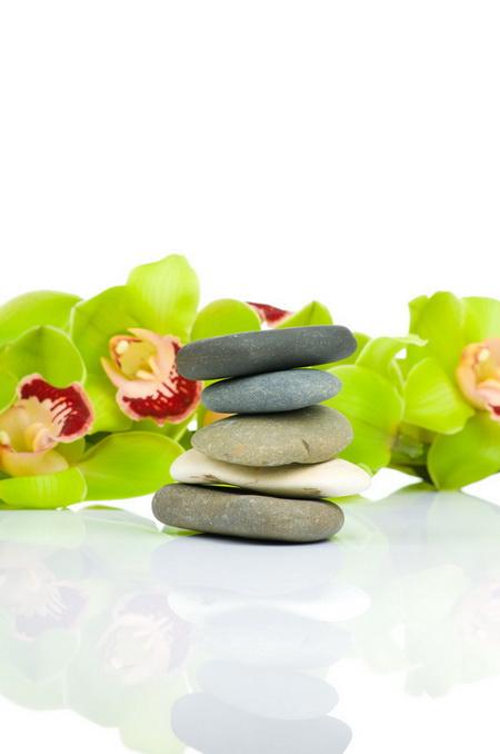 Постер на подрамнике Орхидея на камнях