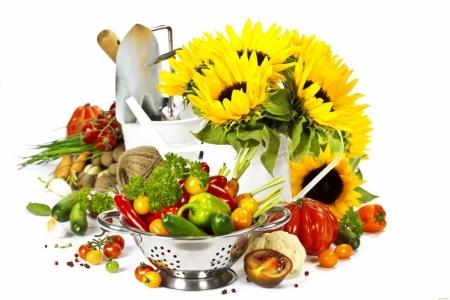 Плакат Подсолнухи и овощи