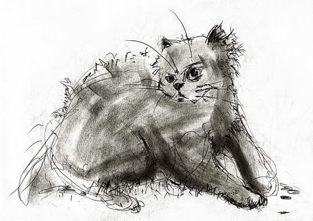 Постер на подрамнике Кот рисунок карандашом