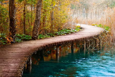 Постер на подрамнике Деревянная тропинка через реку