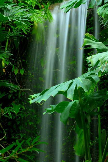 Постер на подрамнике Миниатюрный водопад