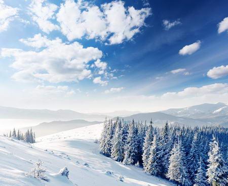 Постер на подрамнике Горный зимний пейзаж