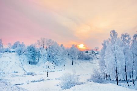 Постер на подрамнике Розовый закат зимой
