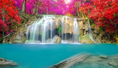 Постер на подрамнике Водопад в ярких красках леса