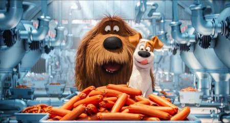Постер (плакат) Тайная жизнь домашних животных