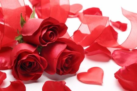 Плакат Лепестки роз