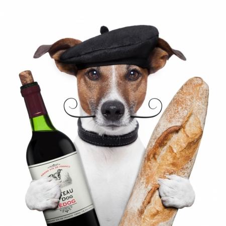 Постер на подрамнике Французская собака с багетом и бутылкой вина