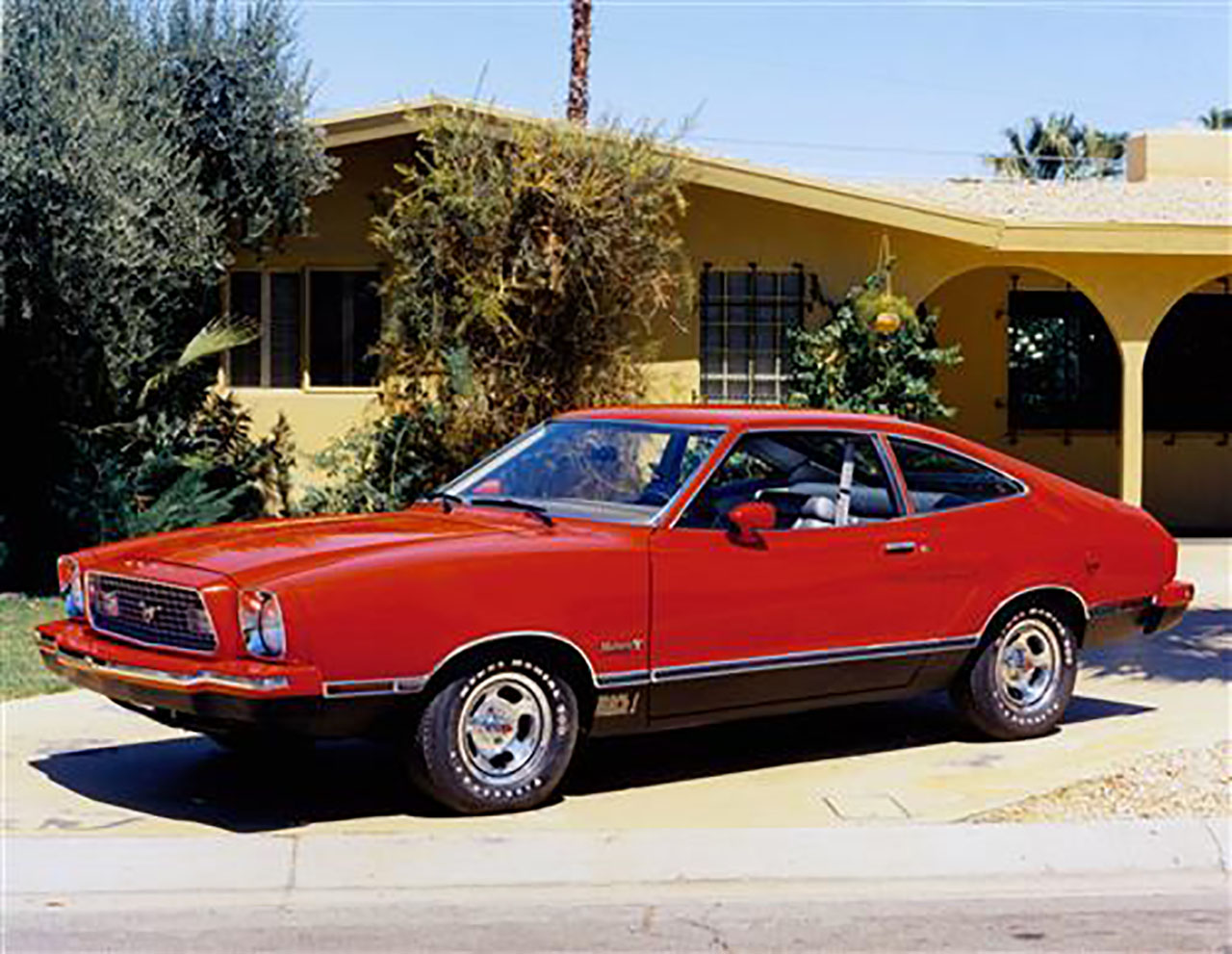 Постер на подрамнике Mustang-164