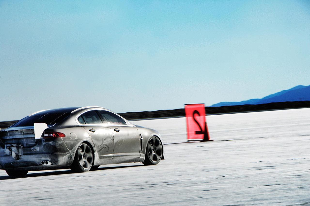 Постер на подрамнике Jaguar-10