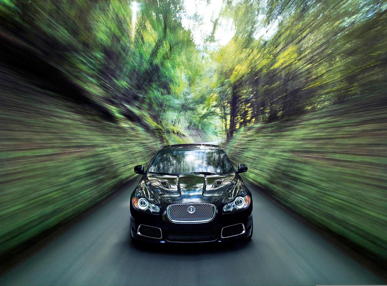 Постер на подрамнике Jaguar-130