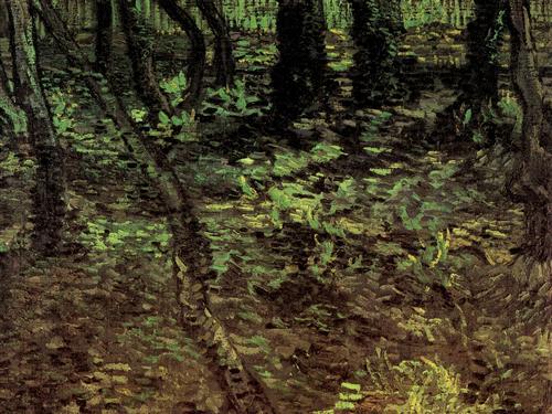 Постер на подрамнике Undergrowth with Ivy