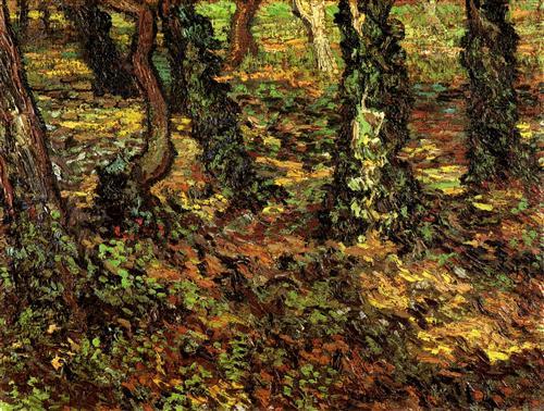 Постер на подрамнике Tree Trunks with Ivy 2