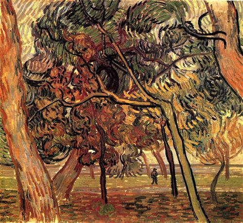 Постер на подрамнике Study of Pine Trees