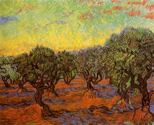 Плакат Olive Grove Orange Sky
