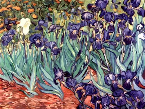 Постер на подрамнике Irises
