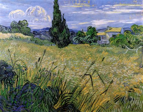 Постер на подрамнике Green Wheat Field with Cypress