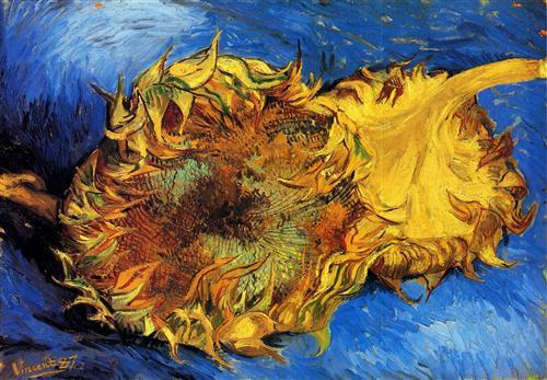 Постер на подрамнике Two Cut Sunflowers 3