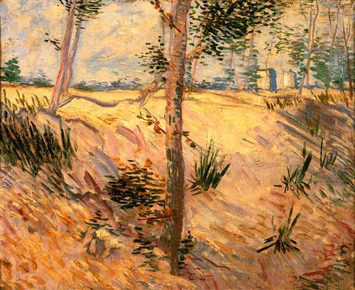 Постер на подрамнике Trees in a Field on a Sunny Day