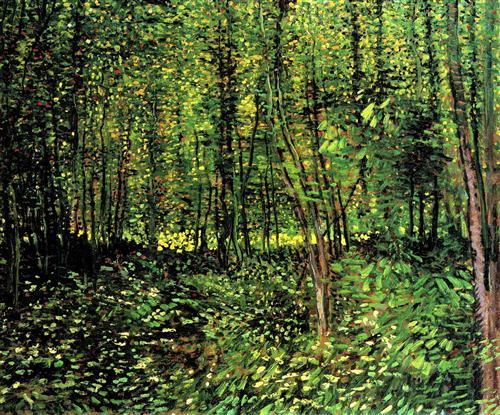 Постер на подрамнике Trees and Undergrowth 2