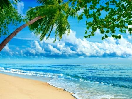Постер на подрамнике Море, пальмы