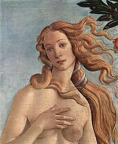 Плакат Birth of the Venus (detail)	  артикул 73907