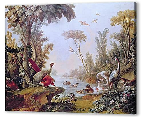 Постер на подрамнике - Lake with geese, storks, parrots and herons from the Salon of Gilles Demarteau